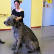 Hund mit Gabi...