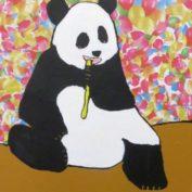 hs_326_70x80_Pandabaer