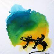 hs_337_60x80_Salamander